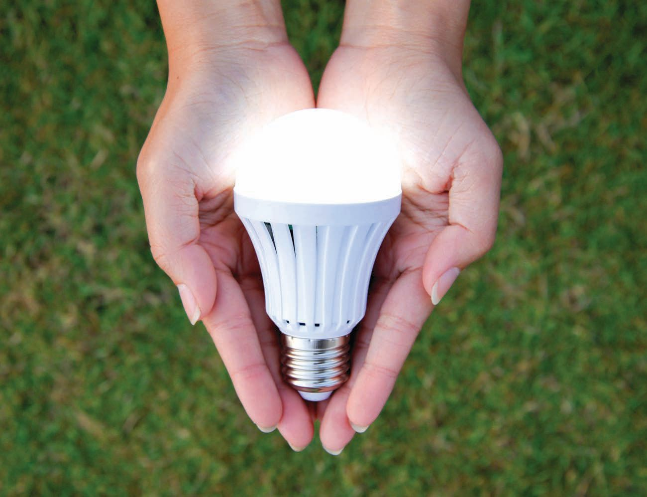 LED lightbulbs can reduce energy consumption